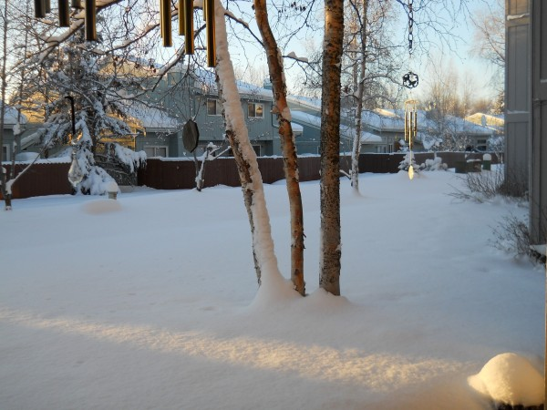 Winter in Anchorage 003